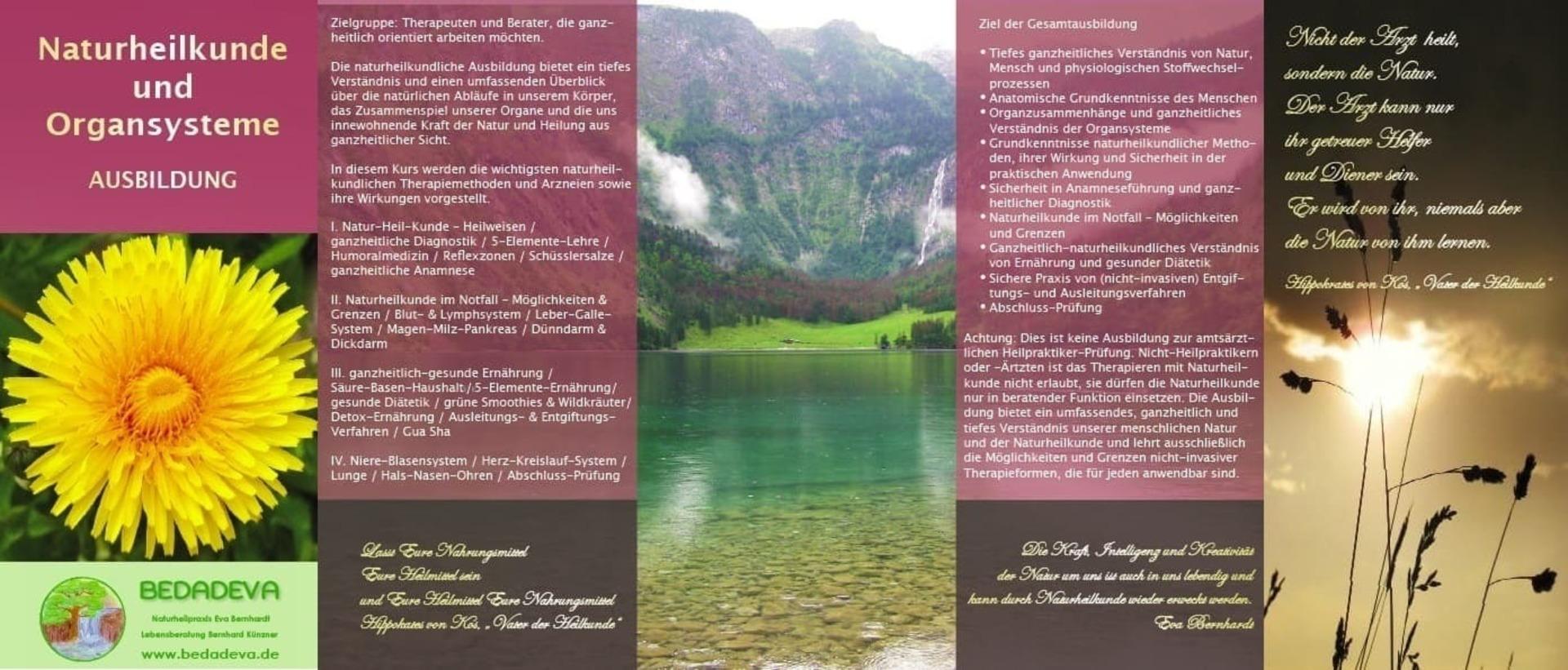 Naturheilkunde und Organsysteme (Ausbildung) @ Praxis-Seminar-Zentrum BEDADEVA